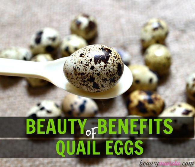 Fotografía - 7 Belleza Beneficios de Huevos de Codorniz