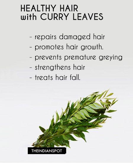 Fotografía - Los beneficios, usos y tratamientos con hojas de curry para el pelo sano