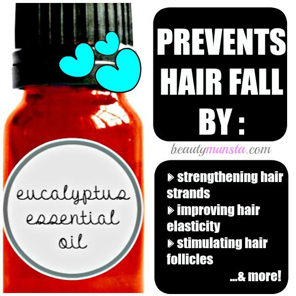 Fotografía - Eucalipto Aceite Esencial para la pérdida del cabello | ¿Por qué funciona