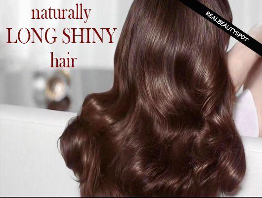 Fotografía - Los tratamientos naturales para el pelo brillante largo