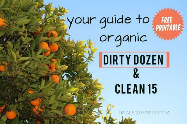 Fotografía - Su guía para Orgánico: Doce del patíbulo y limpio 15 (gratis para imprimir)